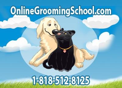 grooming school