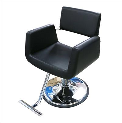 Salon Styling Chair Furniture